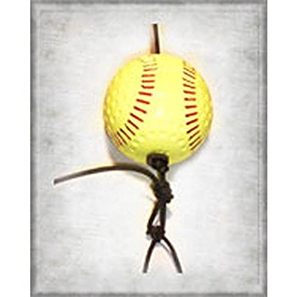 Amazon.com : SwingAway Professional Softball Kit : Baseball ...