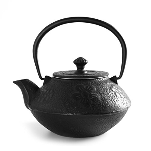 New 800ml Plum Blossom Black Tetsubin Kettle * Cast Iron Tea pot with Infuser Filter 0.8L