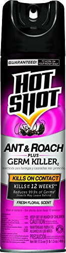 Hot Shot 4460 17-1/2-Ounce Aerosol Roach and Ant Killer Fres