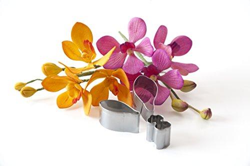 Mokara Orchid Sugar Flower Fondant Cutter Set, Cake Decorating Gum Paste Modeling Chocolate Flower Molds for Cake Decoration, Designed by Kaysie Lackey for Innovative (Chocolate Modeling Paste)