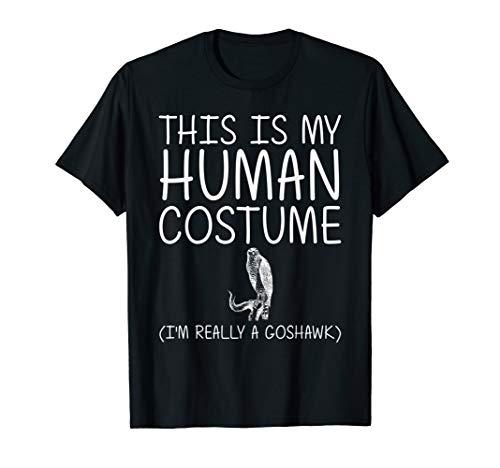 Diy Big Bird Halloween Costumes (Goshawk Easy Halloween Human Costume Raptor Bird DIY Gift)