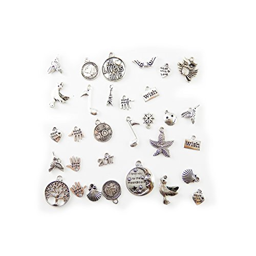 Julie Wang 200 Piece Silver Pewter Charms Pendants Mega Mix DIY for Jewelry Making and Crafting (Charms Animal Pewter)