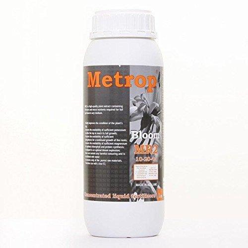 1L - MR2 - Metrop