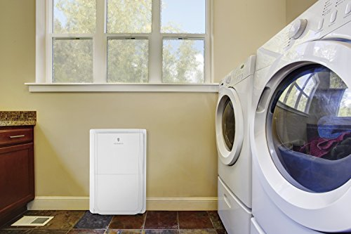 Buy dehumidifiers with pump