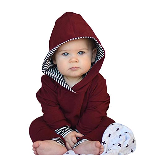 Clearance 2pcs Toddler Infant Baby Boy Girl Striped Hooded Tops Sweatshirt +Pants Wine Red Autumn Winter Outfits Set (Wine, 18-24 Months)
