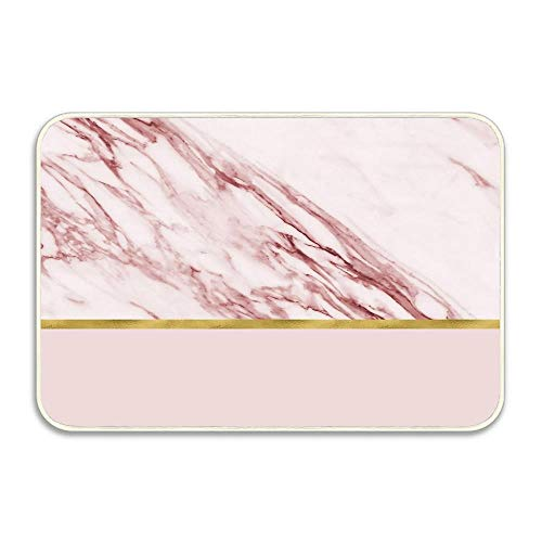 Huayuanhurug Door Mat Indoor Outdoor - Alabaster Rosa & Gold On Blush Welcome mat or Front Door Mats,Entry Rug for Inside Outside Non Slip Rubber Mat 16x24 - Alabaster Entry
