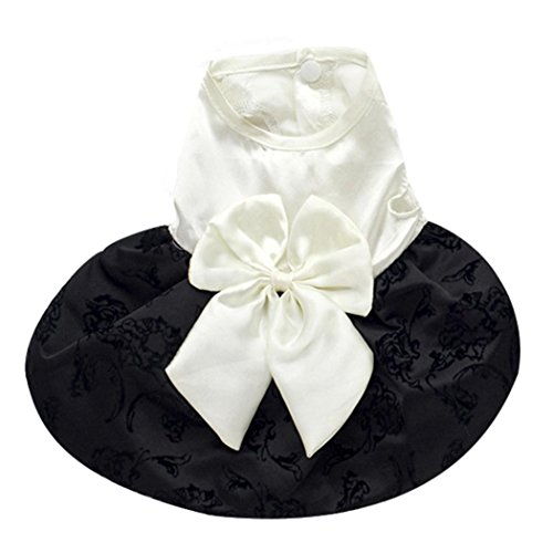 Outtop Pet Clothes, Small Dogs Tutu Dress Coat Shirt Apparel Costume Accessory for Dog Dachshun Chihuahuad (M, White)