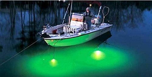 Pmd products 12v underwater green led fishing light snook for Underwater green fishing lights