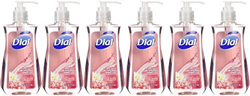 (Dial Himalayan Pink Salt & Water Lily Hand Soap with Moisturizer 7.5 Oz (Pack of 6))