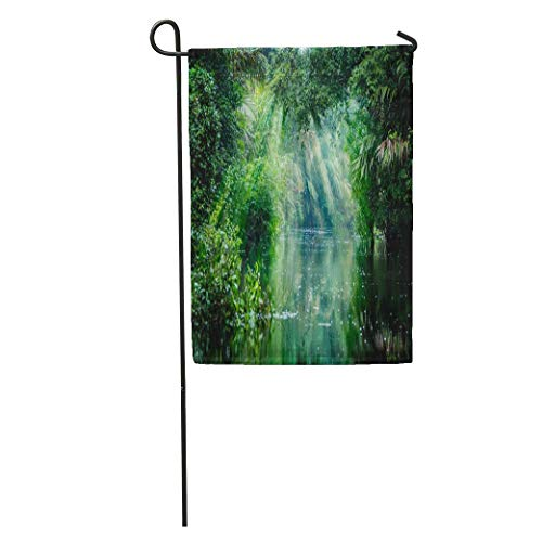 Andrea Back Garden Flag Green Tortuguero National Park Rainforest Costa Rica Caribbean Coast Central Home Yard House Decor Barnner Outdoor Stand 12x18 Inches - National Park Tortuguero