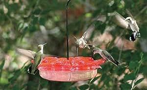 Homestead Petunia Hummingbird Feeder Polycarbonate 12 Oz