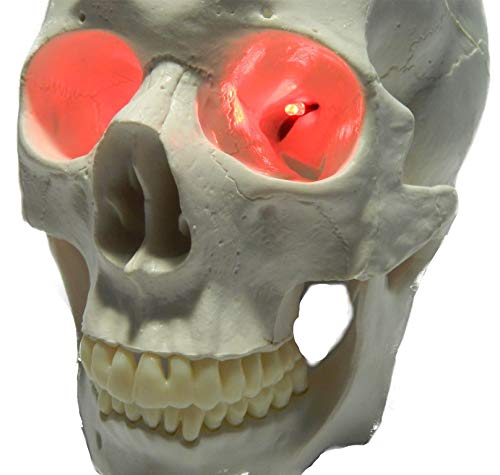 24 inch, Battery Operated, Red Led Eyes For Masks, Skulls and Halloween Props]()