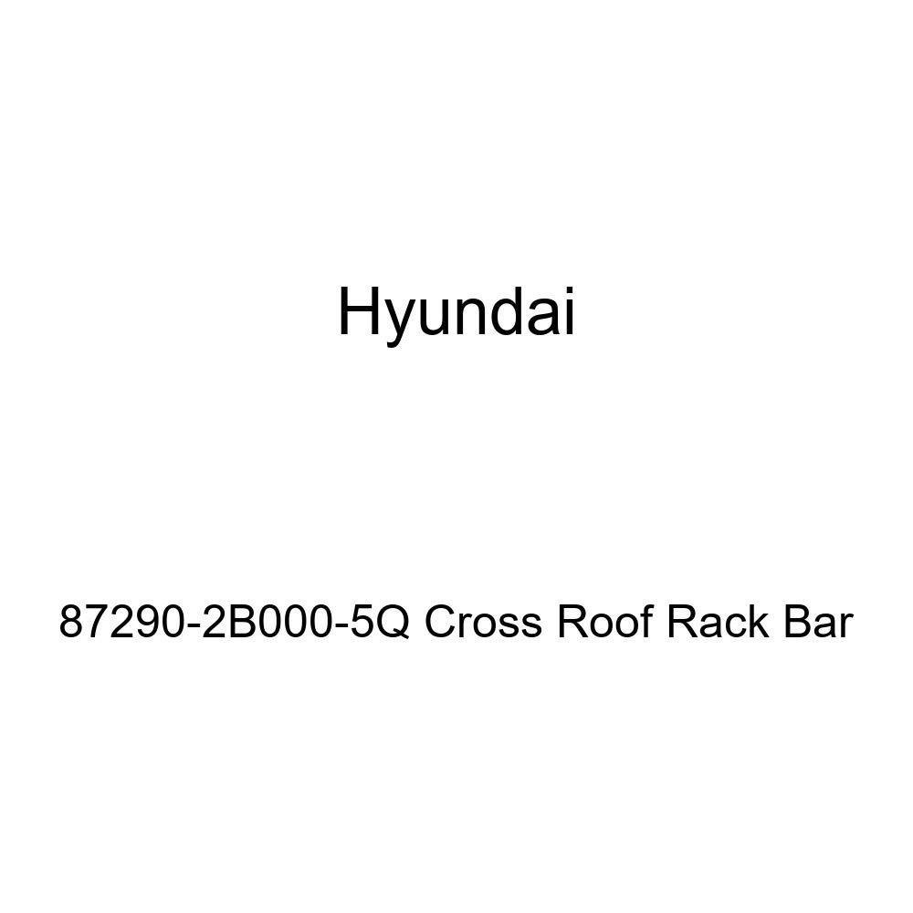 HYUNDAI Genuine 87290-2B000-5Q Cross Roof Rack Bar