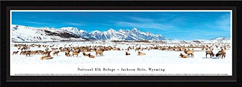 National Elk Refuge - Jackson Hole, Wyoming - Blakeway Panoramas National Park Posters with Select Frame - National Elk Refuge