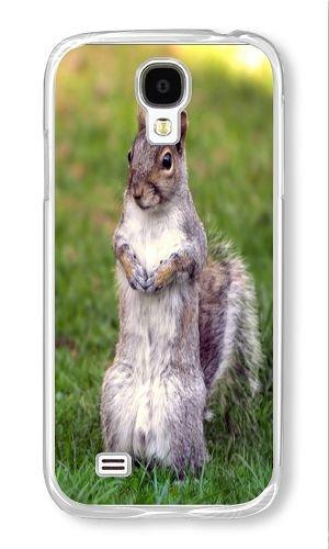 Phone Case Custom Samsung Galaxy S4 I9500 Phone Case Curious Squirrel Transparent Polycarbonate Hard Case for Samsung Galaxy S4 I9500 Case