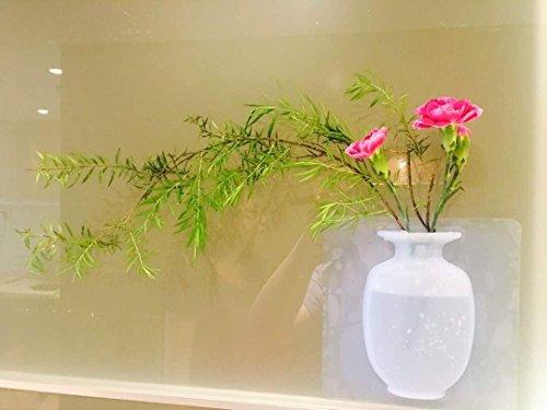ELASTIX ANTIGRAVITY STICKY VASE, SILICONE MAGIC VASE, UNIQUE DECORATION FOR COZY HOUSE, RESTAURANT, PERFECT - Gift Perfect Vase
