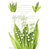Fresh Scents Scented Sachets - Lily of the Valley, Lot of 6