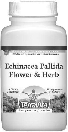 Echinacea Pallida Flower and Herb Powder (4 oz, ZIN: 510916) by TerraVita (Image #1)