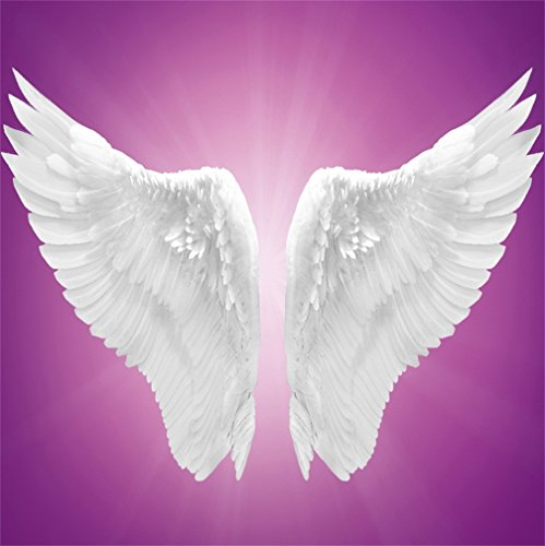 - CSFOTO 8x8ft Background for Angel Wings Birthday Party Decoration Photography Backdrop Dreamy Artistic Fantasy Purple Photo Studio Props Kid Children Portrait Decor Vinyl Wallpaper
