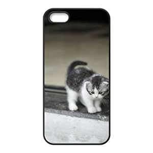 Custom Cover Case with Hard Shell Protection for Iphone 5,5S case with Stay Meng cat lxa#468371