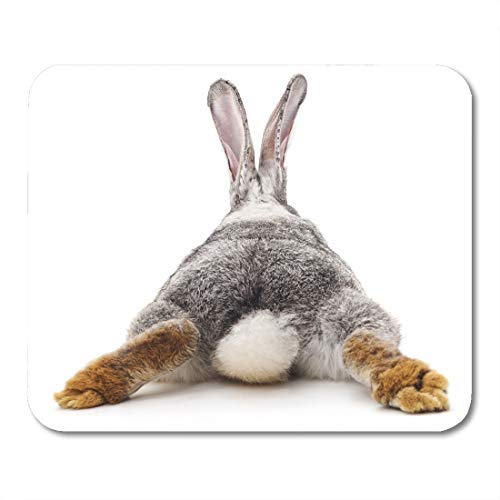 ray Bunny Grey Rabbit Tail Back Farm Looking Animal Mouse pad 9.5