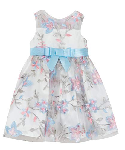 Rare Editions White Embroidered Dress (24 Months)