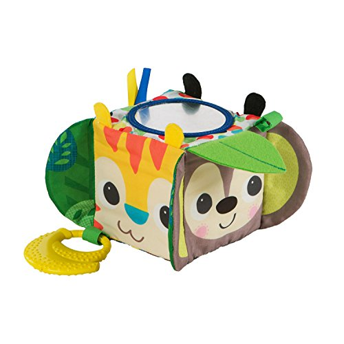 Bright Starts Hide & Peek Block Toys -