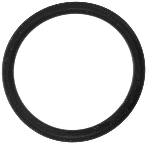 American O-ring Pentair (Pentair 471553 2-329 Neoprene 70 Shore O-Ring Replacement MiniMax Pool and Spa Heater)