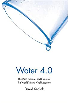 Water 4.0: The Past, Present, And Future Of The World's Most Vital Resource Epub Descargar Gratis