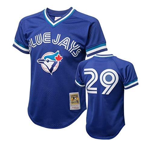 Joe Carter #29 1993 Toronto Blue Jays Royal Mitchell & Ness Mesh BP Jersey