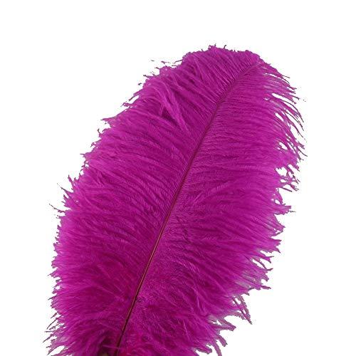 - Sowder 10pcs Ostrich Feathers 12-14inch(30-35cm) Plume Home Wedding Decoration (Fuchsia)