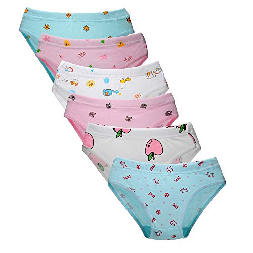 Closecret Kids Underwear Soft Cotton Toddler Panties Little Girls' Assorted Briefs(Pack of 6) (Multicoloured, 2-3 Years)