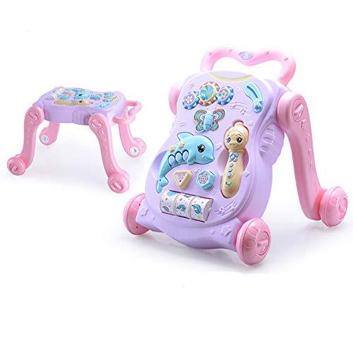 Baby Activity Walker, con Actividades, musica y Sonidos Carrito de Paseo Infantil First Step, Uso 2 en 1 como Juguetes Push & Pull, para ninos de 1 a 3 anos,Blue