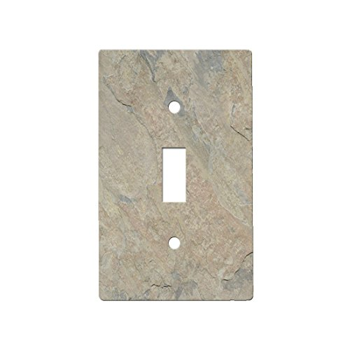 Slate Indian Autumn Light - Decor Single Switch Plate Cover Metal