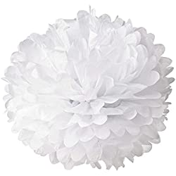 Hmxpls 10pcs White Tissue Hanging Paper Pom-poms, Flower Ball Wedding Party Outdoor Decoration Premium Tissue Paper Pom Pom Flowers Craft Kit