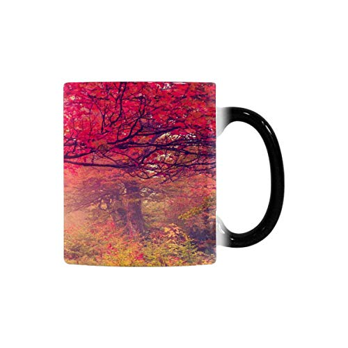 InterestPrint Foggy Fall Tree Forest Heat Sensitive Color Changing Coffee Mug, 11oz Morphing Tea Cup for Mom Dad Best Gift for Mother'Day Father'Day Birthday