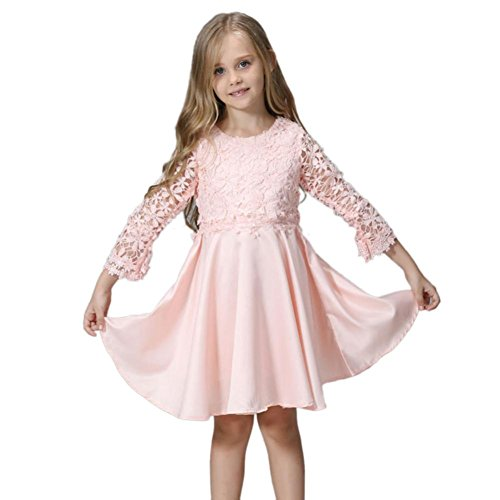 Landfox Baby Girl Long Sleeve Beautiful Cute Sweet Lace Princess Party Daily Dress by Landfox