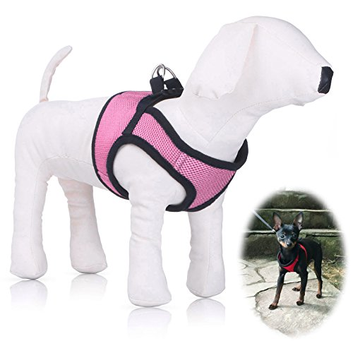 Small Harness PETBABA Quick Release