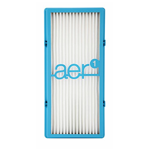 Hepa Cleaner Air Filter Replacement (Holmes AER1 HEPA Type Total Air Filter, HAPF30AT)