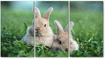 30x40CM X3枚 アートパネル 完成品( 芝生の上でウサギ ) モダン 特大 写真 アートフレーム 絵画 壁飾り キャンバス絵画 パネル装飾画(木枠付きの完成品)