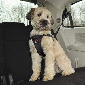 Arnés de perro para coche Easy Rider a prueba de accidentes ...