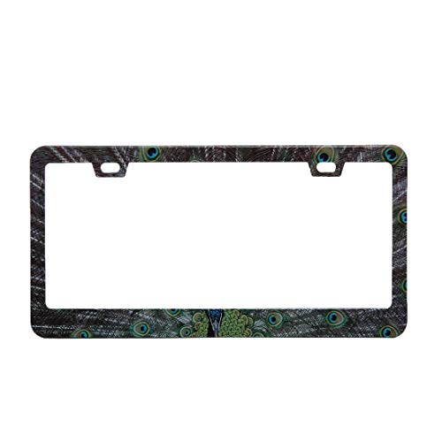 BINGOLIN Beauty Peacock Stainless Steel License Plate Frame, Rust Free Metal, Includes Screws, Fasteners and Caps supplier