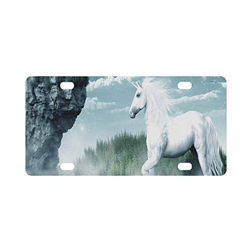 INTERESTPRINT Unicorn and Misty Waterfall Front License Plate 6 X 12 Inches