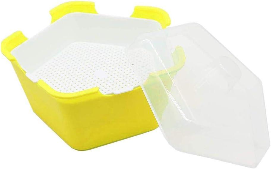 caja multifuncional sin BPA Bandeja para semillas de germinaci/ón de plantas Hangarone bandeja de semillas material de polipropileno port/átil a prueba de humedad