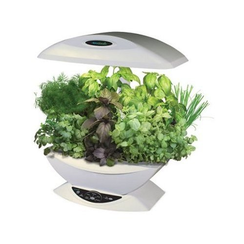 Amazon.com : AeroGarden 7 Pod Indoor Garden With Gourmet Herb Seed Kit,  White : Plant Germination Kits : Garden U0026 Outdoor