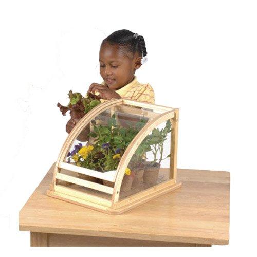 Amazon.com: Tabletop Greenhouse W/ Vegetable Garden Kit: Industrial U0026  Scientific