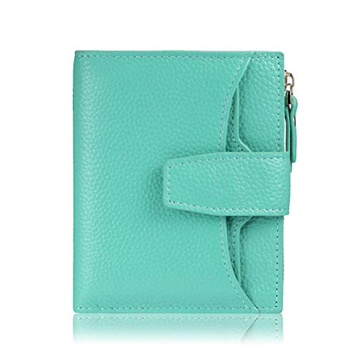 FT FUNTOR RFID Leather Wallet for women,Ladies Small Compact Bifold Pocket Wallet with id Window (Lichee blue)