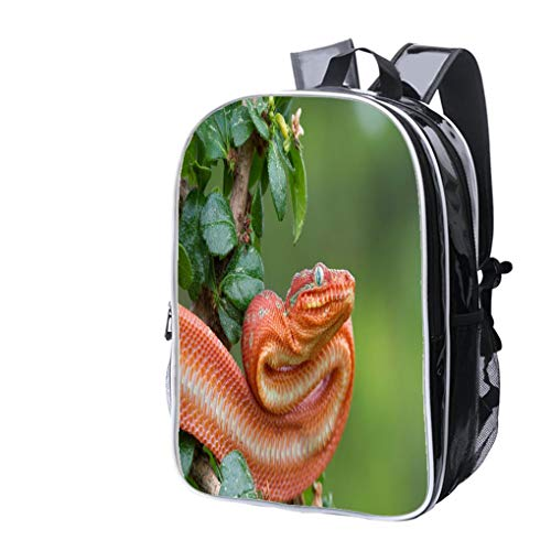 High-end Custom Laptop Backpack-Leisure Travel Backpack Juvenile Emerald Tree Boa Ready to Strike Water Resistant-Anti Theft - Durable -Ultralight- Classic-School-Black -