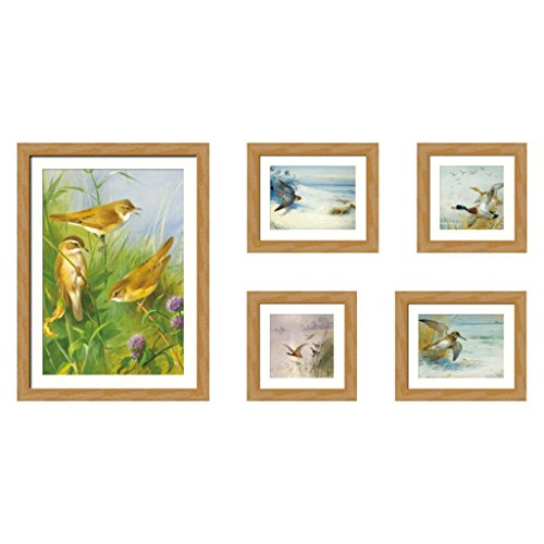 GAOYANG 5 Picture Combination Painting Decorative Picture Frame Combination Photo Wall Living Room Study Bedroom Sofa Wall New Products ( Color : Natural Wood - Birds ) by GAOYANGzhaopianqiang