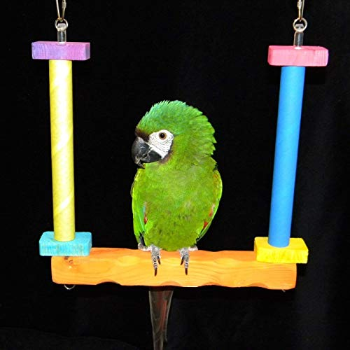 FunTime Birdy Bagel Swing for African Grey and Amazon - Birdy Bagels